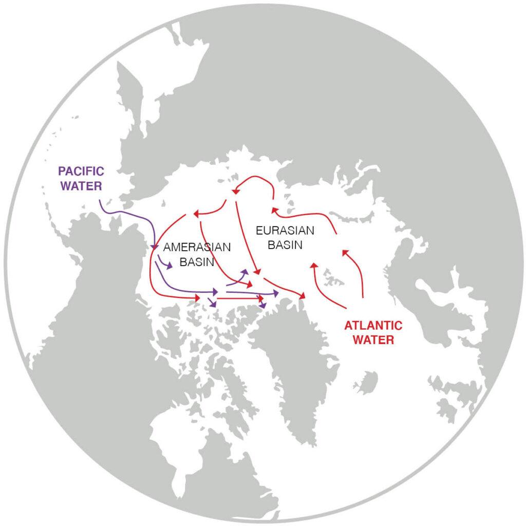 Changements dans l'océan Arctique entraînés par les mers subarctiques