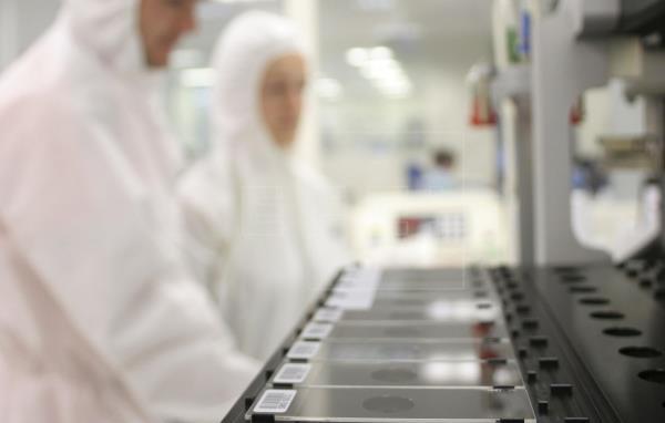 Des chercheurs apprennent aux globules rouges comment devenir l'avenir des vaccins |  Futur