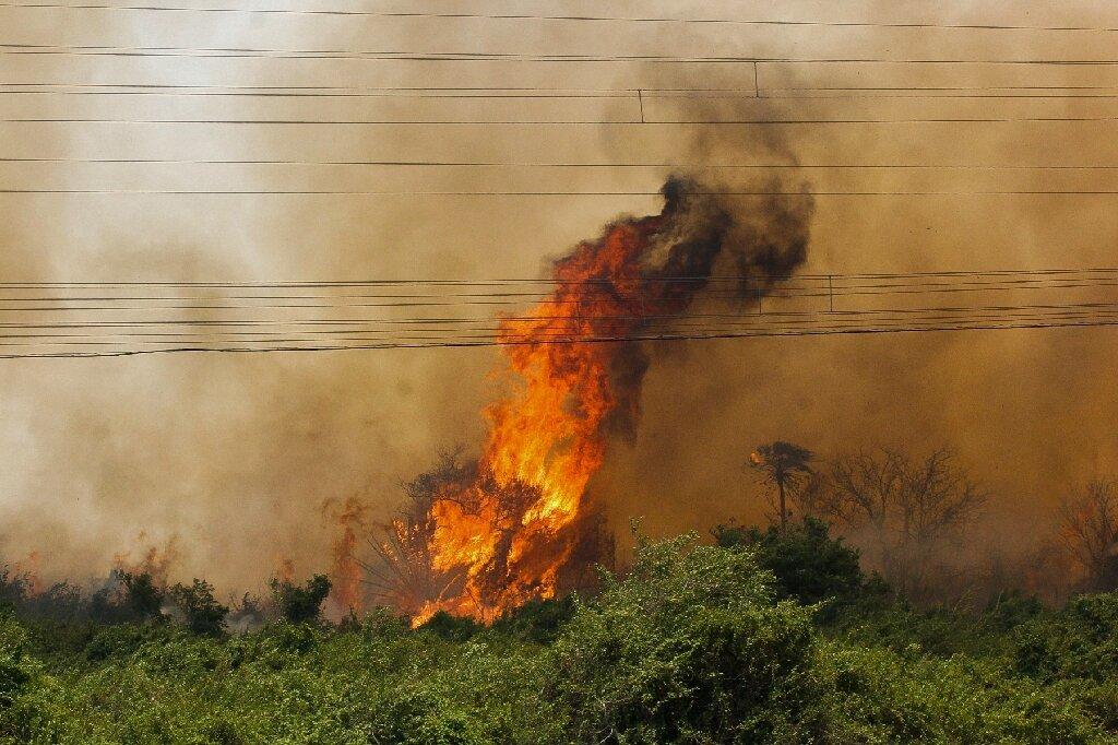 Feu triple dans les zones humides du Pantanal au Brésil en 2020
