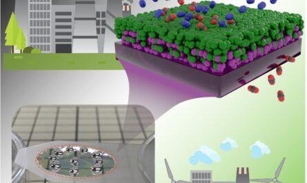 Interface moléculaire mince entre les polymères pour une membrane efficace de capture du dioxyde de carbone