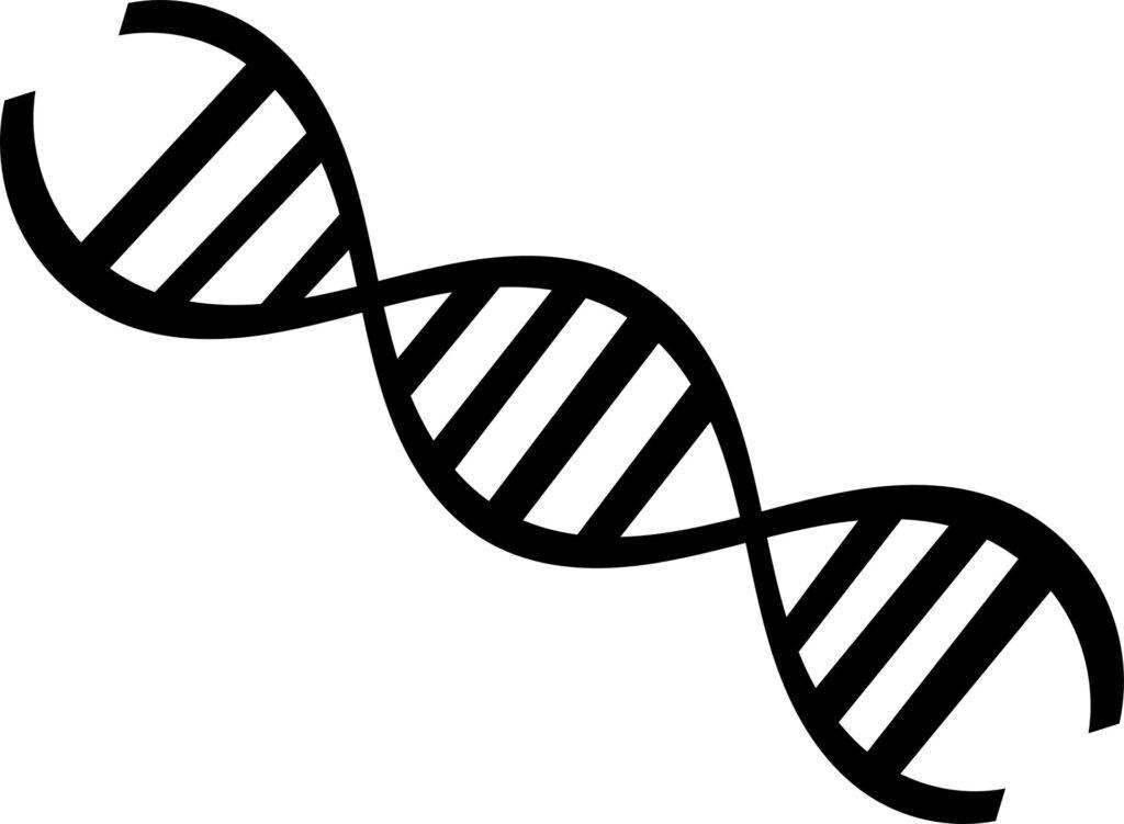 L'ADN oxydé induit par le virus de la grippe active les inflammasomes