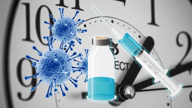 La fabrication du vaccin Covid-19 pourrait commencer en novembre