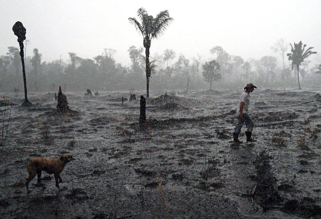 Le Brésilien Bolsonaro sous pression pour protéger Amazon