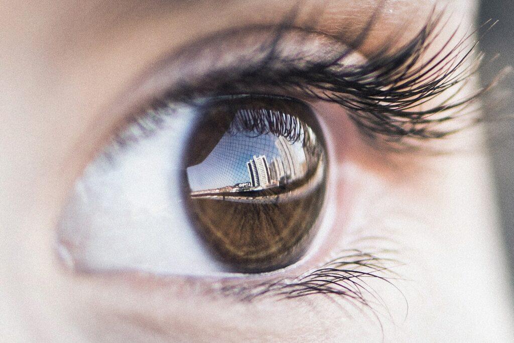 Les scientifiques de la vision découvrent pourquoi les humains ne voient littéralement pas les yeux