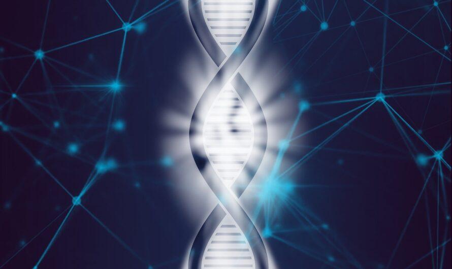 Les scientifiques réalisent le premier assemblage complet du chromosome X humain