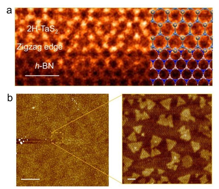 Stabilisation de la phase d'onde de densité de charge par des interactions interfaciales