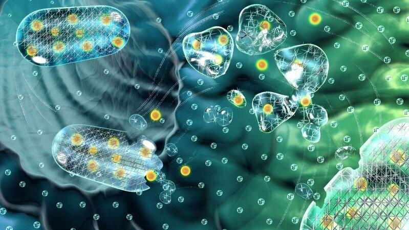 Un gel qui se décompose, se remet en place pourrait améliorer l'administration de médicaments oraux
