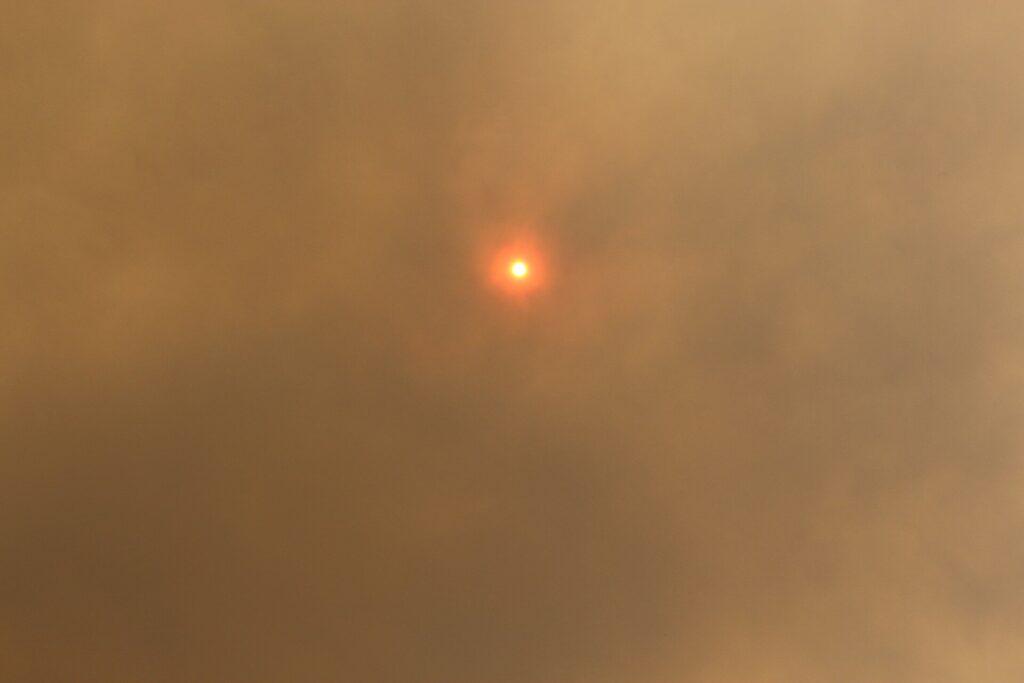Une étude met en lumière l'impact du microclimat des feux de brousse