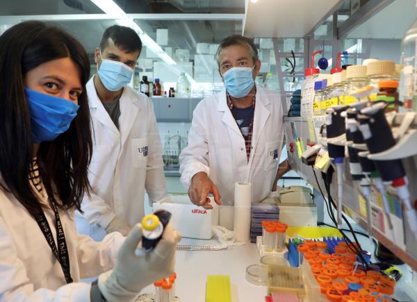 Un proteína del SARS-CoV-2 tiene un papel en debilitar la respuesta inmune